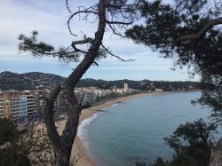 Фото из тура Апельсиновый рай:отдых на побережье Испании и Франции!!!, 30 апреля 2016 от туриста Svitlana