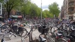 Фото из тура Больше, чем любовь. Отпуск в Амстердаме4 дня в Амстердаме + Берлин и Франкфурт на Майне, 14 мая 2016 от туриста ЕВА