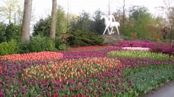 Фото из тура Счастливый Случай…3 дня в Амстердам, 3 дня в ПарижеАмстердам, Брюссель, Люксембург и Париж!, 25 апреля 2016 от туриста flower