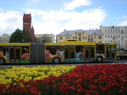 Фото из тура Нежная и скромная – Волынь и Беларусь, 15 мая 2016 от туриста alice