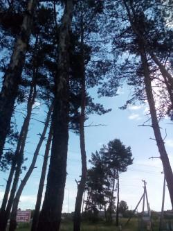 Фото из тура Сказания о Волыни, 12 июня 2016 от туриста ангел