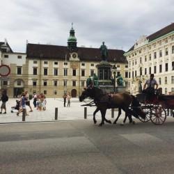 Фото из тура 6 прекрасных мгновенийПрага, Вена, Краков + Будапешт и Егер, 02 августа 2016 от туриста Paultscher