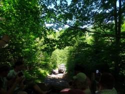 Фото из тура «Карпатский тандем» …или отпуск для активных, 09 июля 2016 от туриста Julia