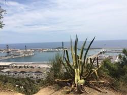 Фото из тура Испания – гордый цветок ЮгаОтдых на море, 06 августа 2016 от туриста Vera