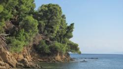 Фото из тура Сиеста у греков, 07 сентября 2016 от туриста tantey