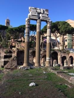 Фото из тура Рим! Все только начинается… Флоренция + Венеция, 02 октября 2016 от туриста СВ