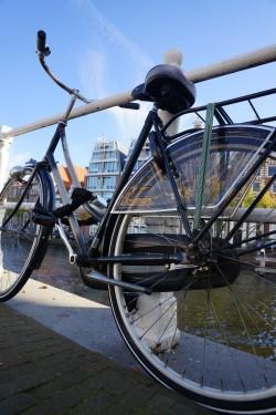 Фото из тура Королевские лучики - БеНиЛюкс: Нидерланды + Бельгия + Люксембург!!!, 07 октября 2016 от туриста Michael