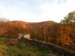 Фото из тура Изюминки Закарпатья, 26 октября 2016 от туриста bukis