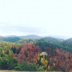 Фото из тура Там, где солнце касается горных вершин…Велико-Тырново+Бухарест+Брашов, 28 октября 2016 от туриста deinata