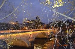 Фото из тура Французский Каприз или 4 дня в Париже!!!, 12 ноября 2016 от туриста 11111