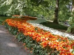 Фото из тура Цветочные королевства + Парк цветов КекенхофАмстердам, Гамбург и Бремен!, 07 мая 2016 от туриста LediGala