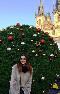 Фото из тура Новогоднее путешествие в Прагу, 29 декабря 2016 от туриста adema