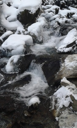 Фото из тура Свежесть родников Закарпатья… зимнее настроение, 31 декабря 2016 от туриста Игорь