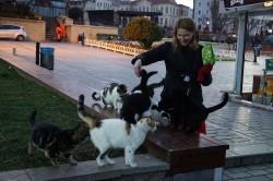 Фото из тура Загадочный Истанбул, 29 декабря 2016 от туриста Happy_Inna
