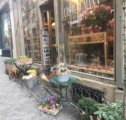 Фото из тура В полном шоколаде... Швейцария + Прага и Мюнхен!, 31 января 2017 от туриста Anna