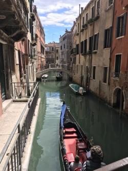 Фото из тура Скажем «чииииз» в Италии: Флоренция + Рим + Венеция, 07 мая 2017 от туриста law_anna