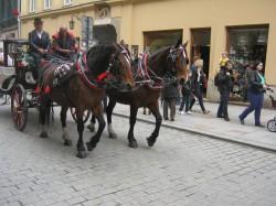 Фото из тура Уикенд в Краков!, 30 апреля 2017 от туриста Любитель