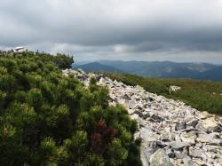 Фото из тура Карпатских гор перезвон, 11 июня 2017 от туриста Юлія