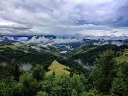Фото из тура Свежесть родников Закарпатья, 01 июля 2017 от туриста Анна