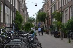 Фото из тура Счастливый Случай …Амстердам! Брюссель! Париж!, 01 июля 2017 от туриста Tetyana