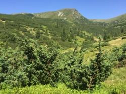 Фото из тура Отпуск разноцветный, словно сны, 04 августа 2017 от туриста Marinella