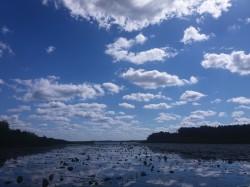 Фото из тура «Сказания Волыни»…с отдыхом на Шацких озерах!!!, 04 августа 2017 от туриста nkaterinaa