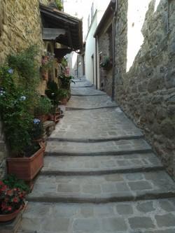 Фото из тура О Тоскане… со вкусом + Монтекатини-Терме, 09 сентября 2017 от туриста Une belle femme