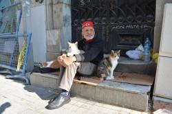 Фото из тура Секрет райского наслаждения...Отдых на Средиземноморском побережье Турции, 12 октября 2017 от туриста Yana