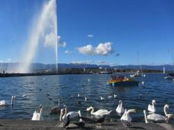 Фото из тура Кастаньеты испанского сердца, 01 октября 2017 от туриста Юлия