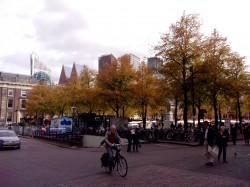 Фото из тура Здравствуй, милый... или 3 дня в Амстердаме!, 09 октября 2017 от туриста Оксана
