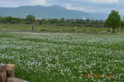 Фото из тура Изюминки Закарпатья, 06 мая 2017 от туриста Николай