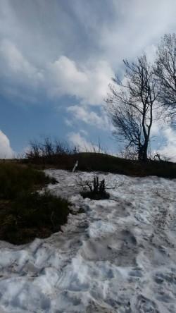 Фото из тура Свежесть родников Закарпатья, 28 апреля 2018 от туриста Serhio