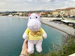 Фото из тура Лазурная интрига!Верона, Ницца, Канны, Монако и Венеция, 29 апреля 2018 от туриста lenchik