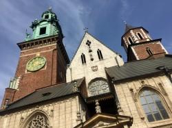 Фото из тура Пикничок в Амстердаме, 02 мая 2018 от туриста plata