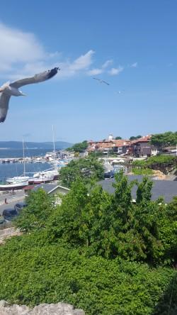 Фото из тура Загадочный Истанбул, 26 мая 2018 от туриста Mersed