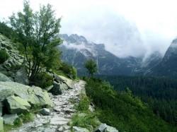 Фото из тура Ahoooj Словакия, привет Закарпатье, 24 июня 2018 от туриста Tana