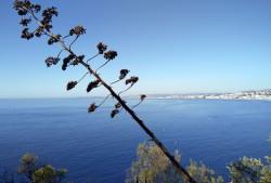 Фото из тура Мотивы лазурных нот:Ницца, озеро Гарда и Адриатическое побережье!, 25 августа 2018 от туриста Марина