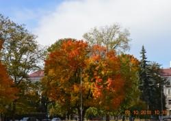 Фото из тура Балтийские мотивыСтокгольм + Вильнюс, Таллин и Рига!Выезд из Киева, 07 октября 2018 от туриста Nina