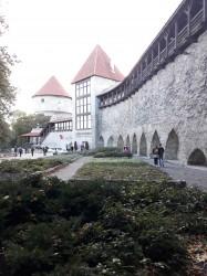 Фото из тура Балтийские жемчужинки: Литва + Латвия + Эстония!, 26 сентября 2018 от туриста fedora