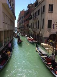 Фото из тура Знакомство с Казанова! Вена + Венеция, 17 апреля 2019 от туриста OKsana