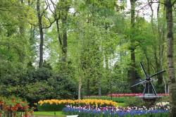 Фото из тура Фантастическая четверка: Амстердам, Брюссель, Прага и Берлин!, 24 апреля 2019 от туриста Di