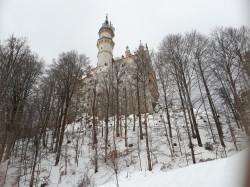Фото из тура Приятное знакомство с Баварией!, 11 января 2019 от туриста Elena123