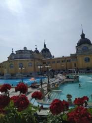 Фото из тура Дефиле для романтиков: Прага, Милан, Венеция, 06 июня 2019 от туриста Ирина