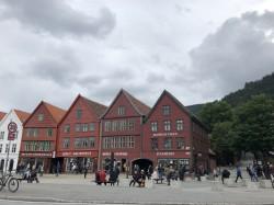 Фото из тура Скандинавские фьорды3 фьорда, 3 замка, 4 столицыЛедовик Нигардсбрин, Язык Тролля и Берген, 18 июня 2019 от туриста Inessa