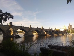 Фото из тура Три счастливых дняКраков, Прага + Дрезден, 03 июля 2019 от туриста Helga Khom