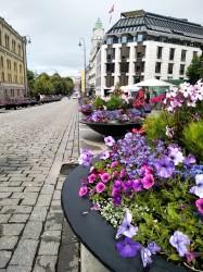 Фото из тура Скандинавские фьорды3 фьорда, 3 замка, 4 столицыЛедовик Нигардсбрин, Язык Тролля и Берген, 30 июня 2019 от туриста Марина