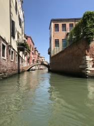 Фото из тура Рим притягивает нас!Вена, Флоренция и Венеция!, 06 июля 2019 от туриста Karina