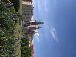 Фото из тура Пикничок в Амстердаме2 дня в Амстердаме + Прага, 20 июля 2019 от туриста VikaV