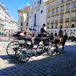 Фото из тура Все в Праге, а я в Париже!+ Диснейленд!, 05 августа 2019 от туриста Альона