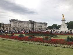 Фото из тура Королевский отпуск: Англия + Шотландия, 20 июля 2019 от туриста Ирина
